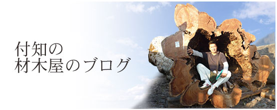 付知尾木材屋のブログ